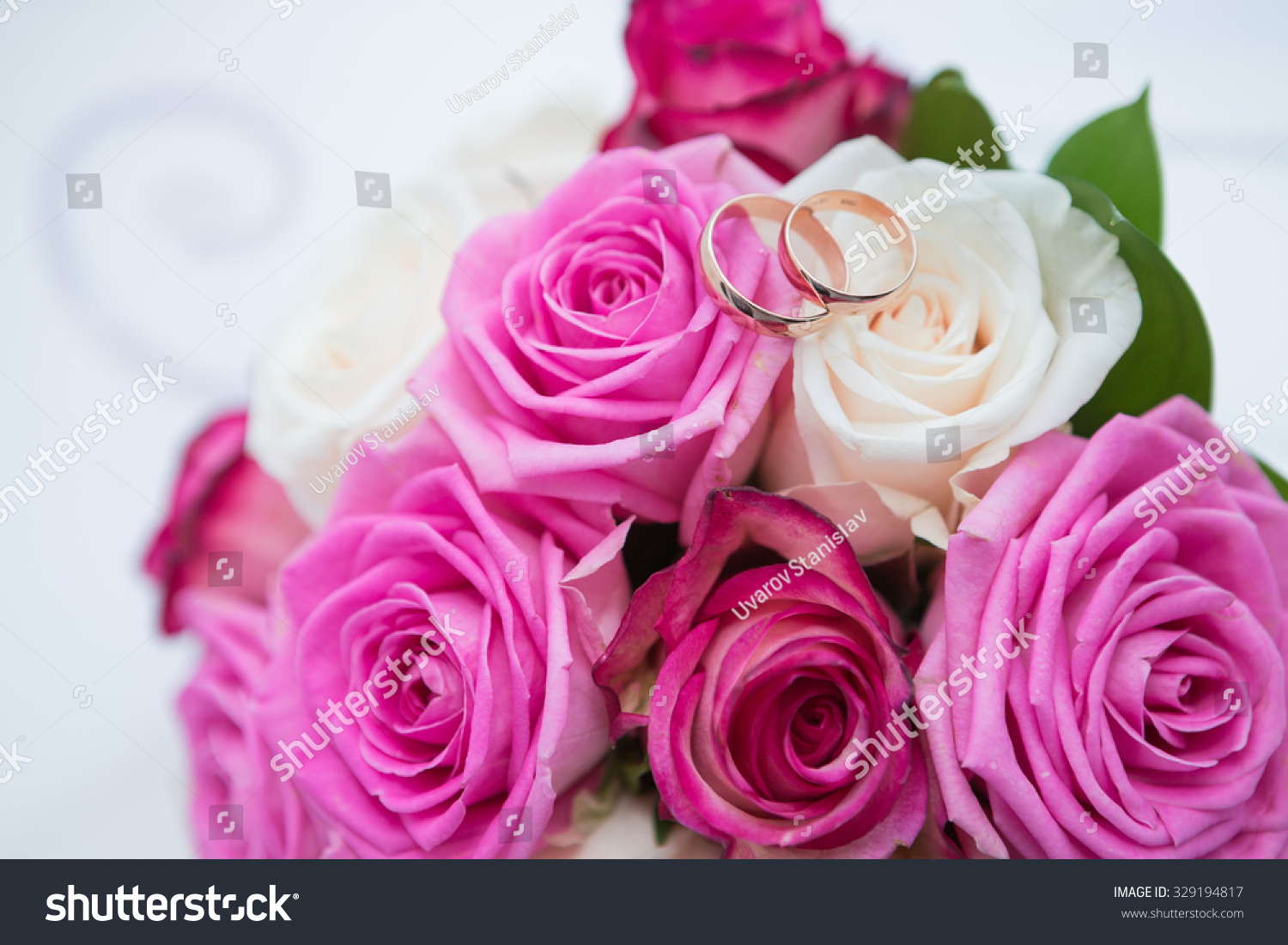 Two wedding rings and spring blossoms. Wedding concept. | EZ Canvas