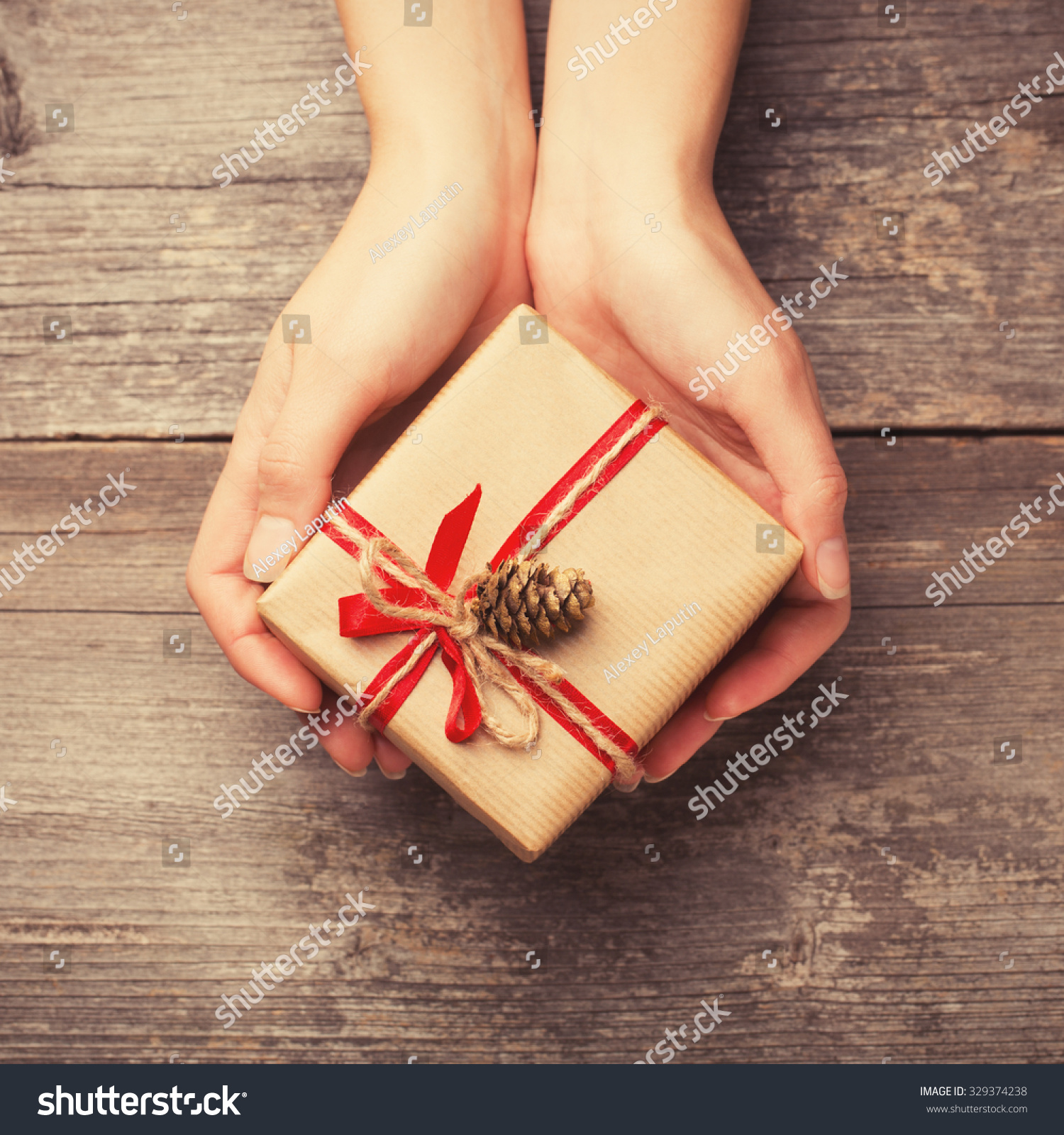 Hands Holding Gift Box Pine Cone Stock Photo 329374238 ...