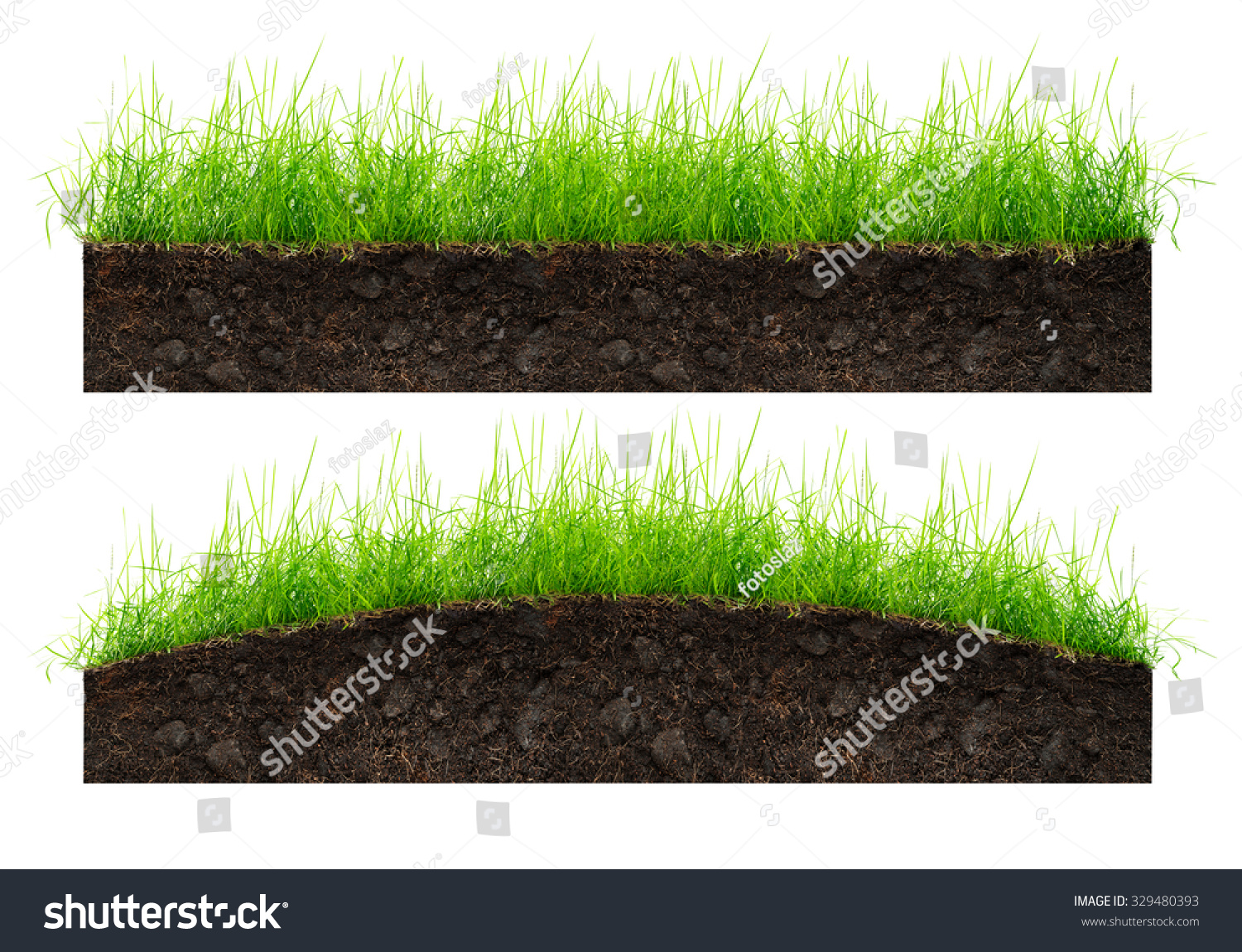 Set of soil and green grass isolated on white stock photo for Soil and green