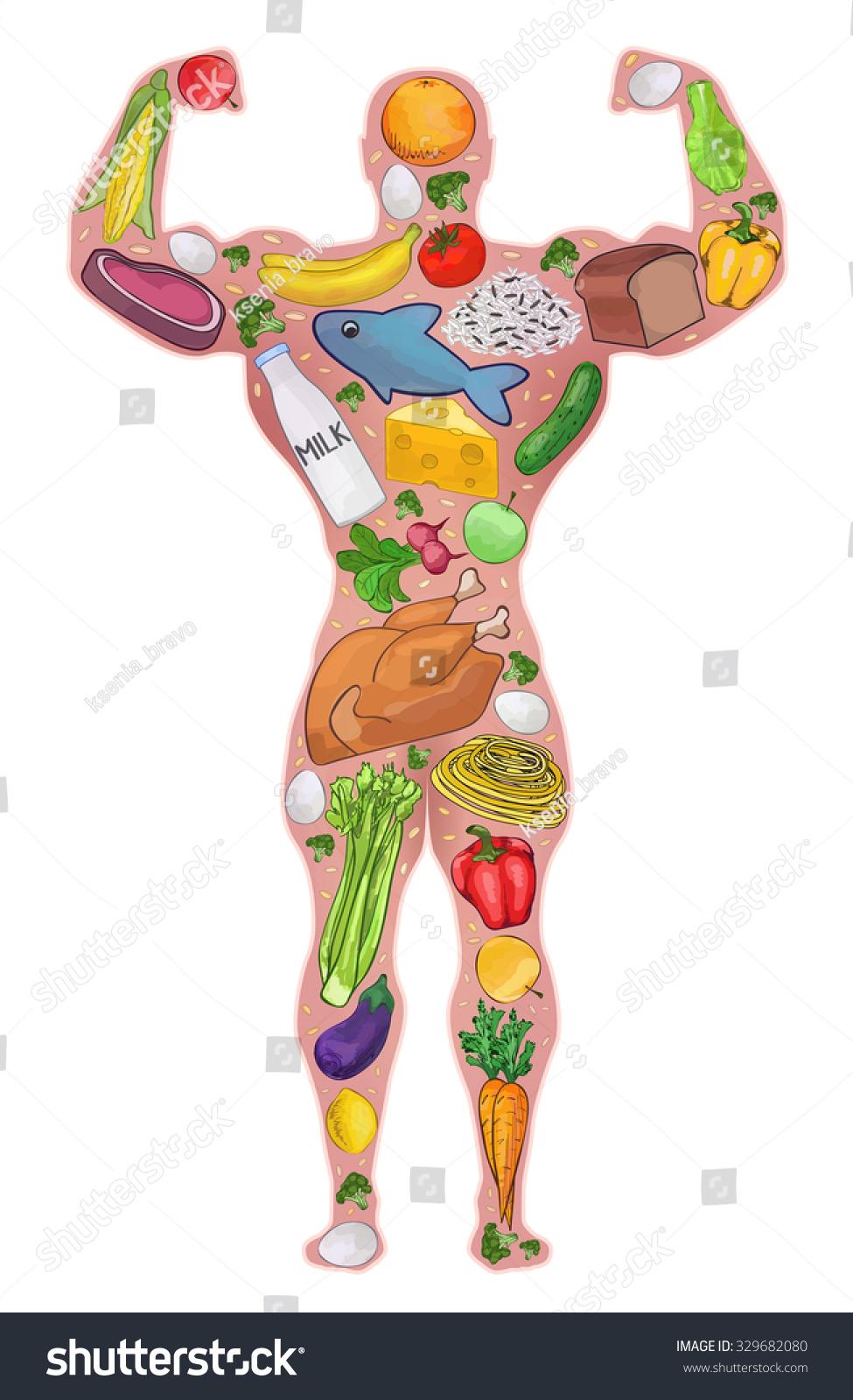 Athlete Food Healthy People Diet Protein Stock Vector
