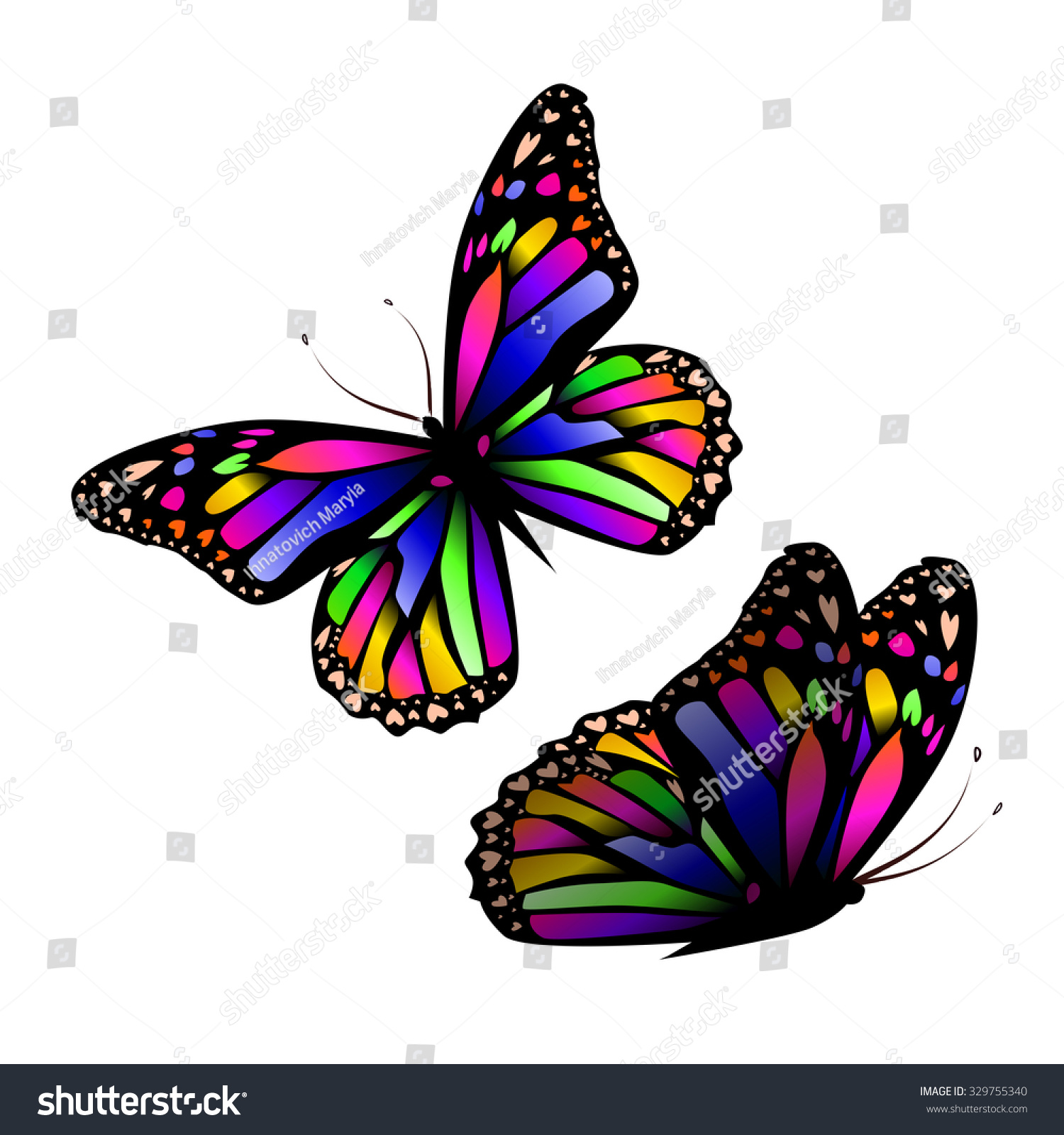 Colorful Butterfly Vector Stock Photo (Photo, Vector, Illustration ...