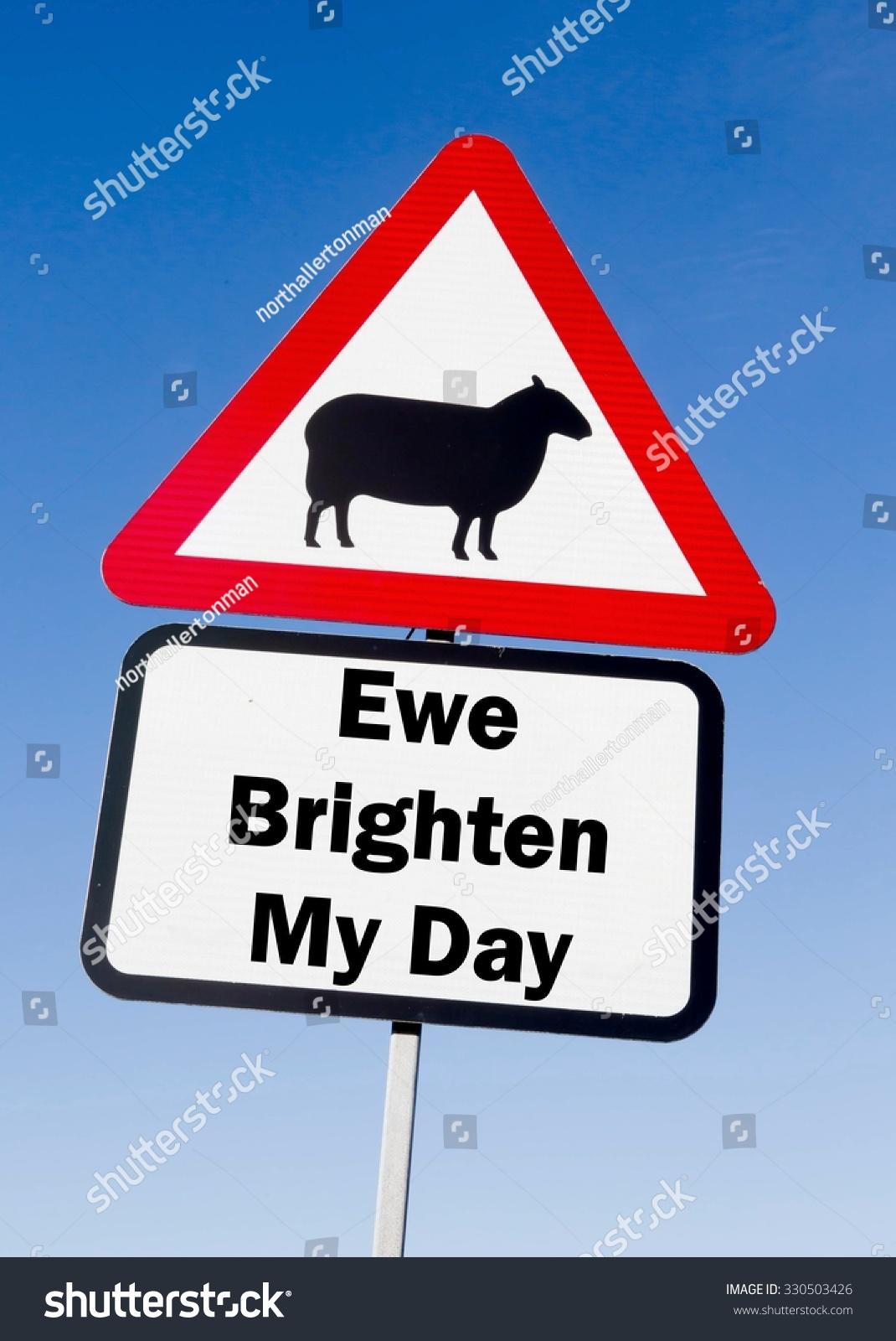 Red White Triangular Road Sign Ewe Stock Photo (Edit Now