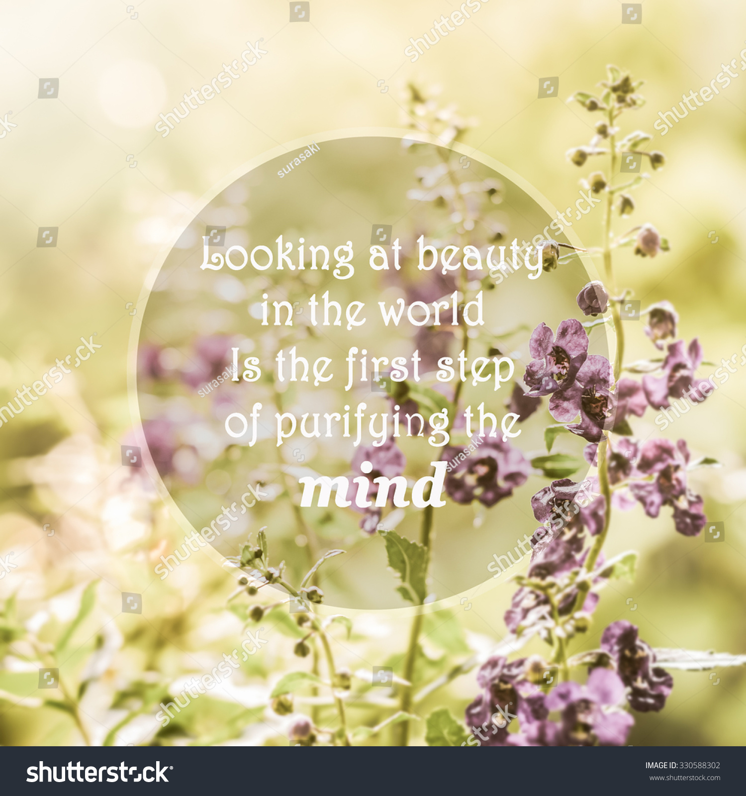 Meaningful Quotes On Purple Flowers Meadow Stock Photo Edit Now