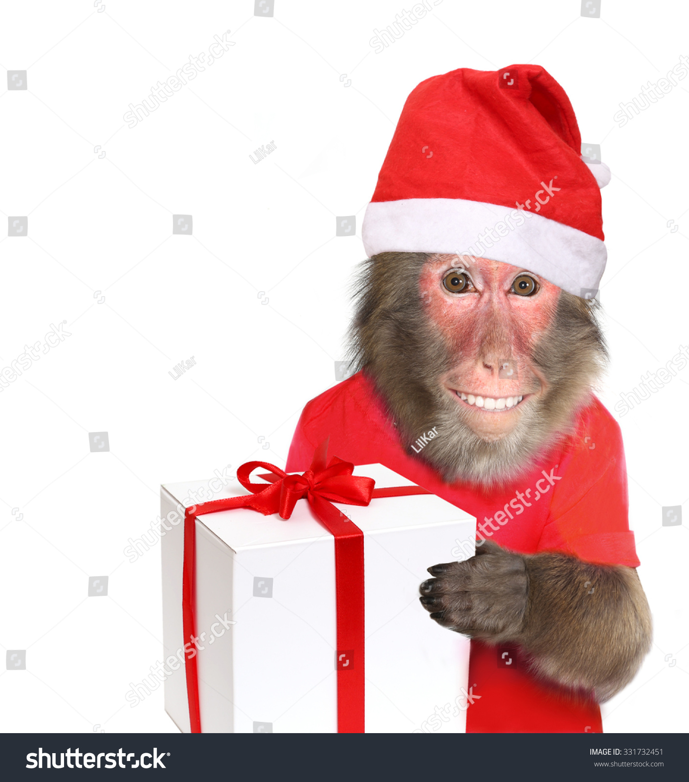 Funny monkey santa claus christmas gift stock photo 331732451 funny monkey santa claus with christmas gift negle Image collections