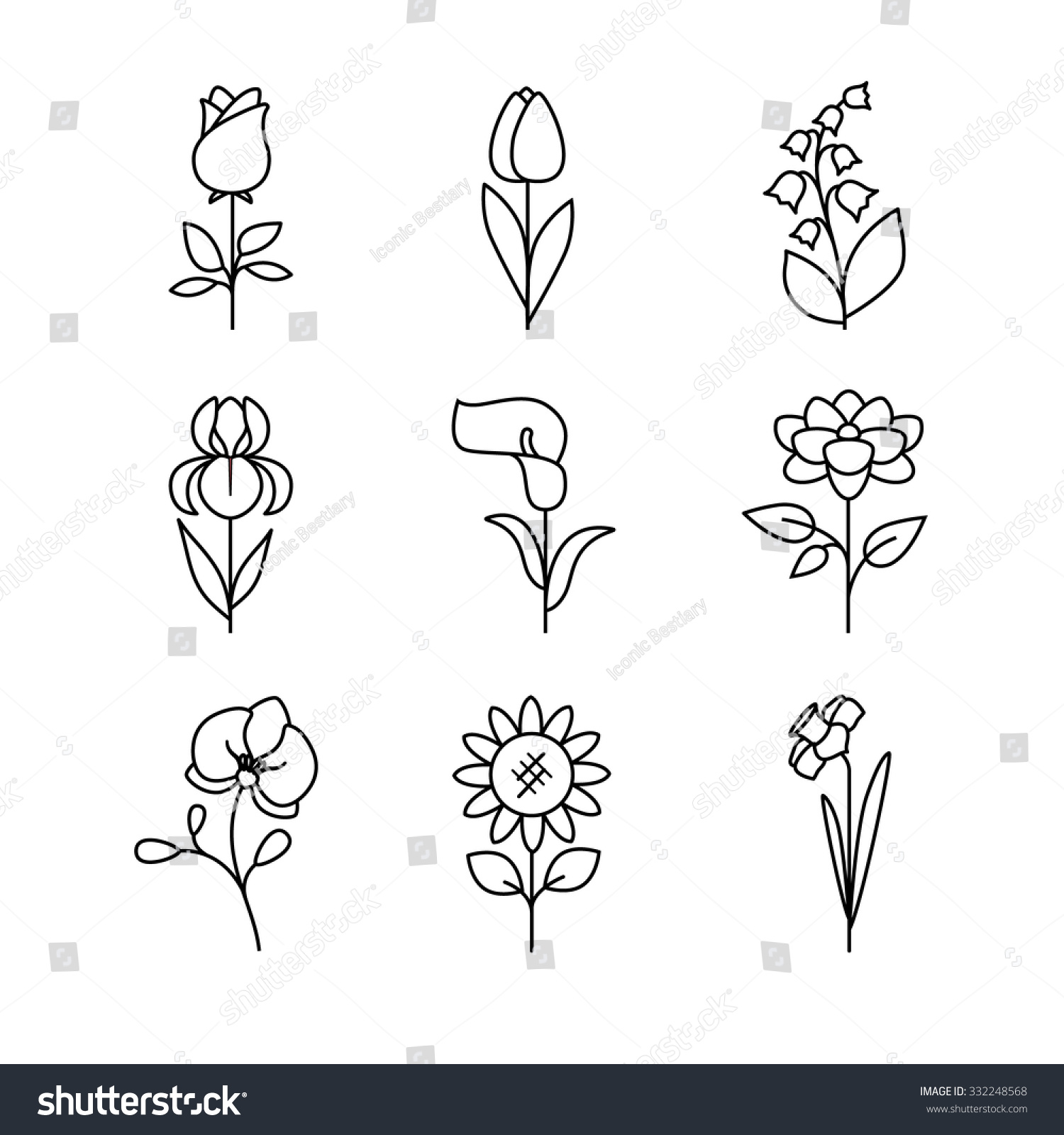 Wedding Flower Line Drawing : Popular wedding flowers blossoming thin line stock vector