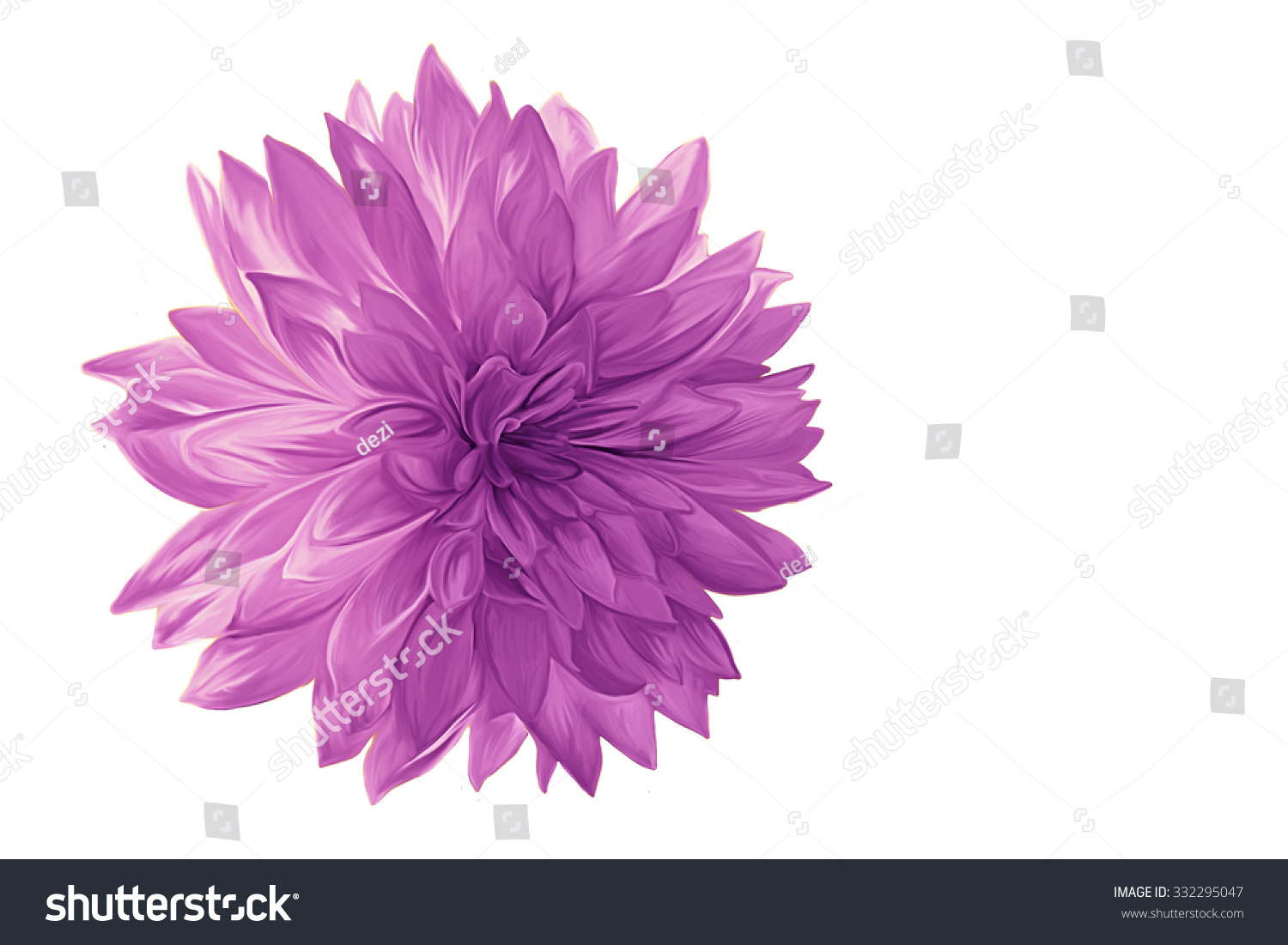 Drawing Oil Painting Purple Dahlia Flower Stock Illustration