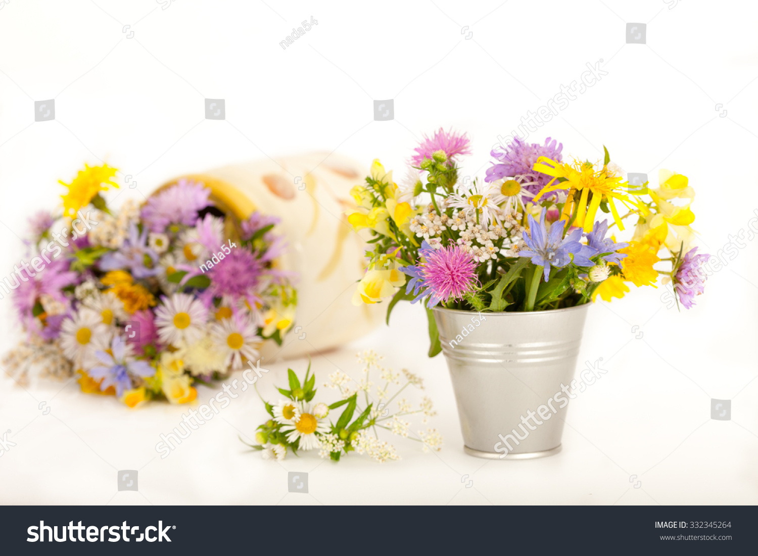 192 & Beautiful Meadow Flowers Small Vases White Stock Photo (Edit ...