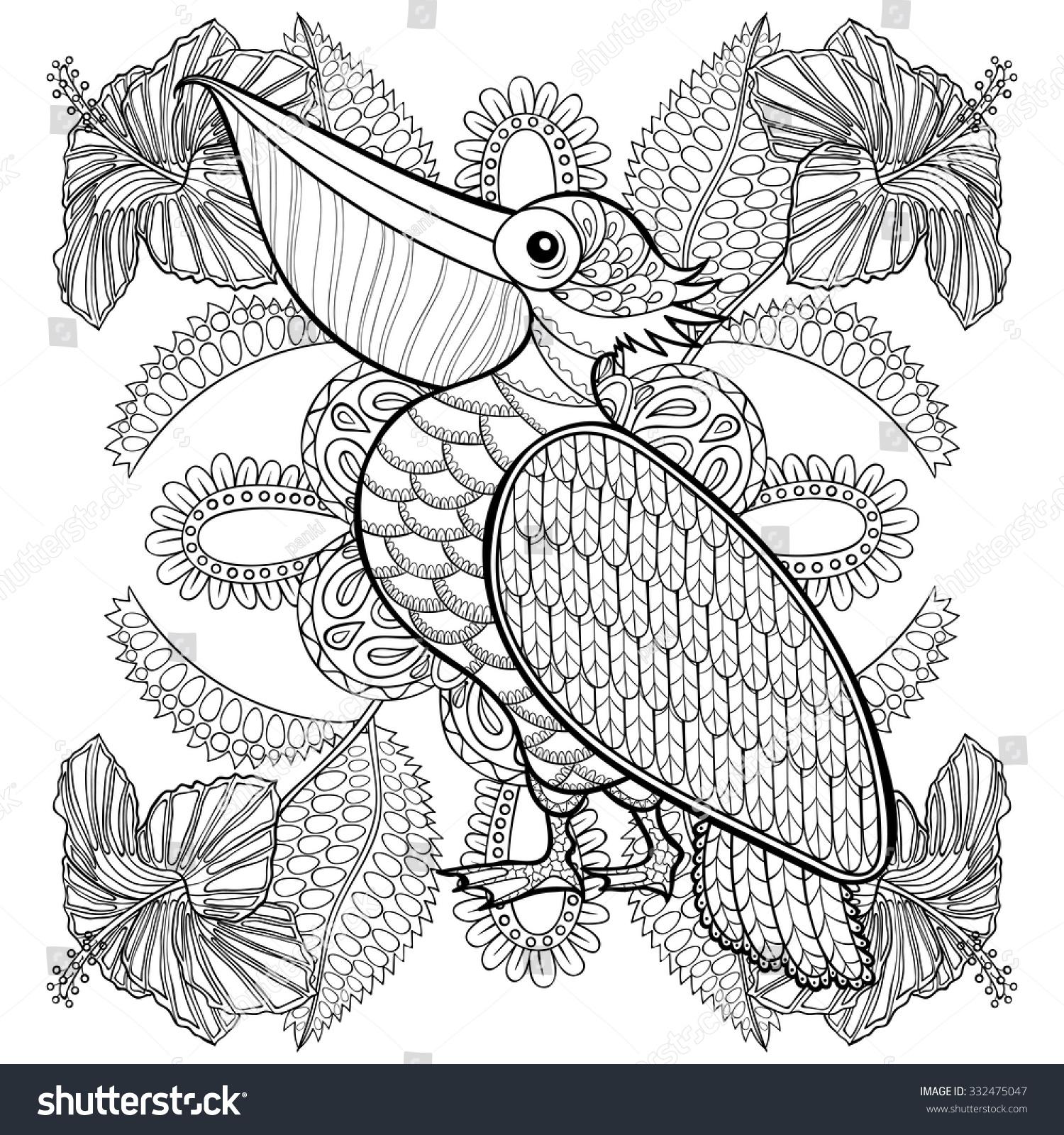 Coloring Page Pelican Hibiskus Flowers Zentangle Stock