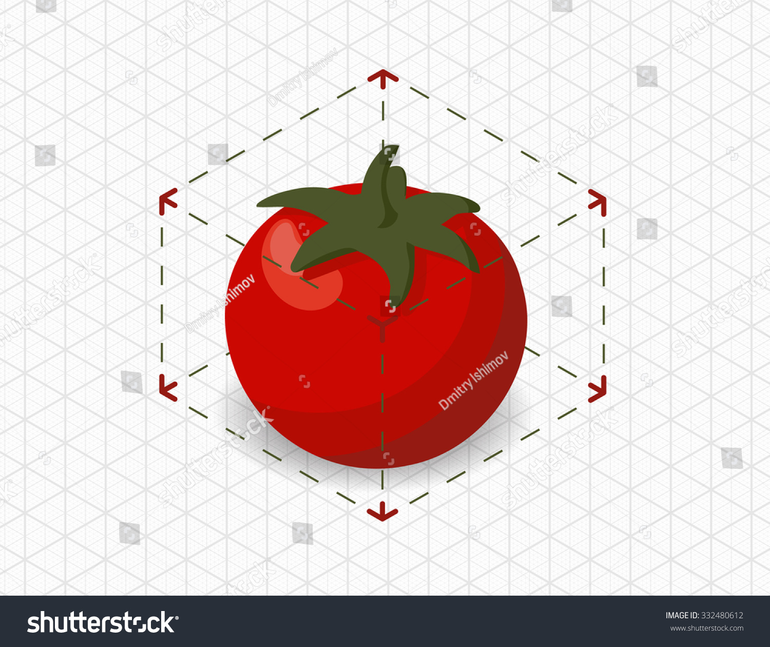 Isometric Tomato Bounding Box Stock Vector Royalty Free 332480612 Plant Diagram In