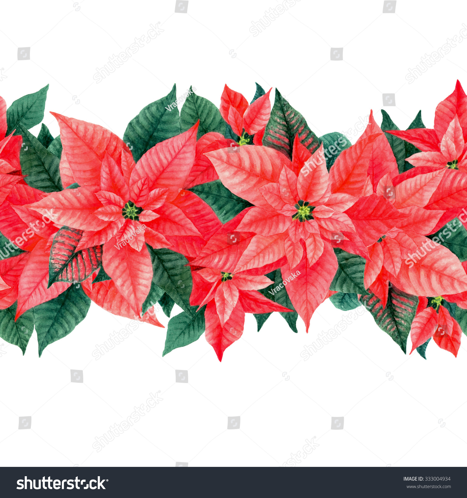 seamless watercolor poinsettia hand painted floral border isolated on white background