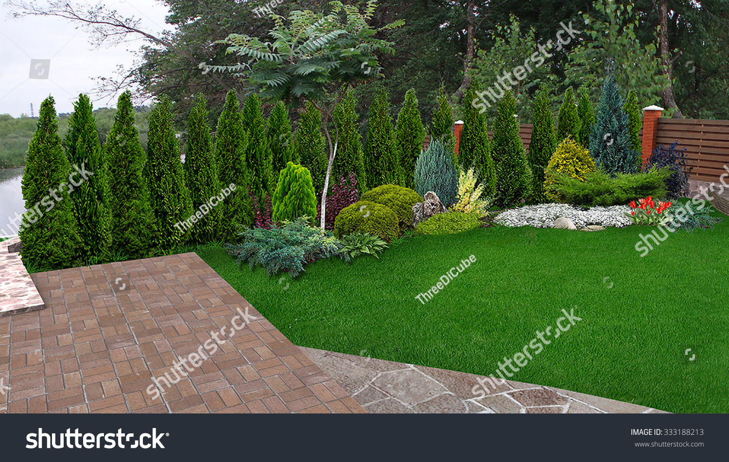 Images of Privacy Garden Screening Ideas - Garden And Kitchen