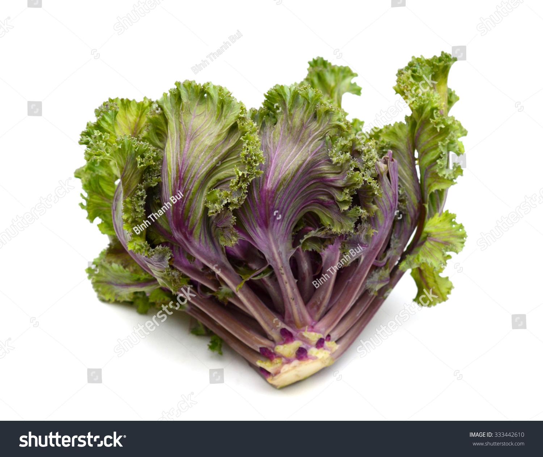 Kale Flower On White Background Stock Photo Edit Now 333442610