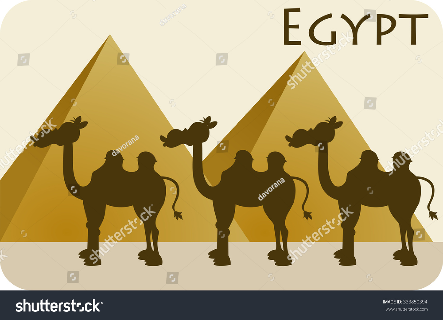 egyptian pyramids two hum camel caravan stock vector 333850394