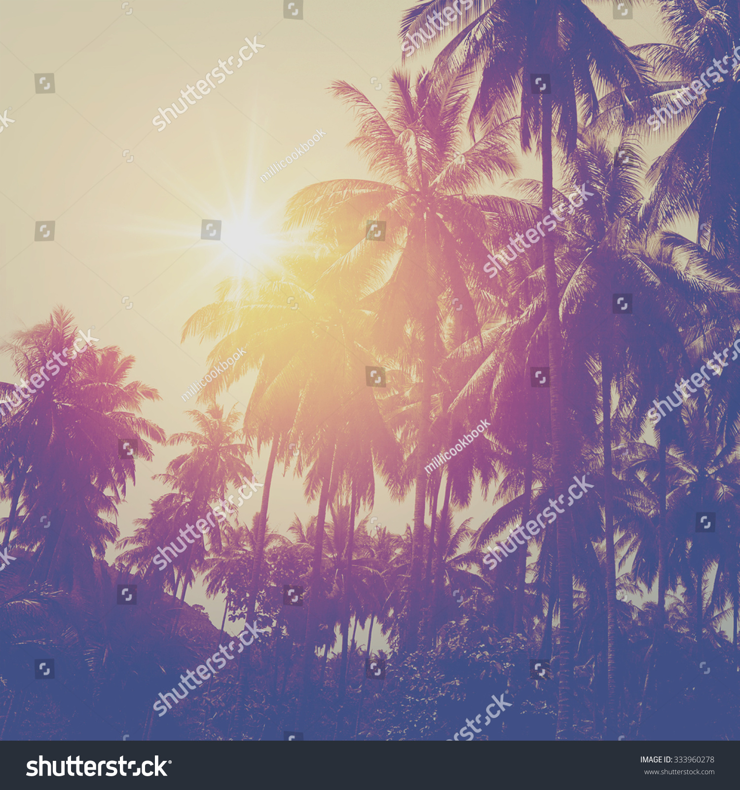 Tropical Beach Landscape With Coconut Palm Trees At Sunset