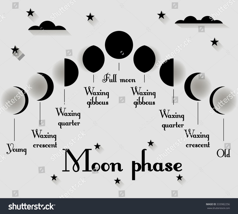 Moon Calendar Illustration : The phases of moon vector illustration