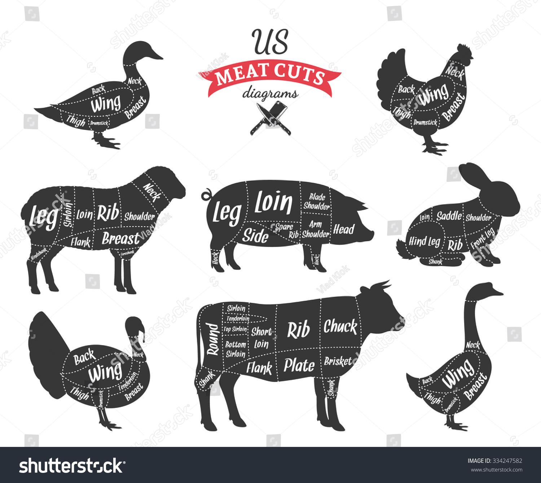 chicken cut diagram | Diarra