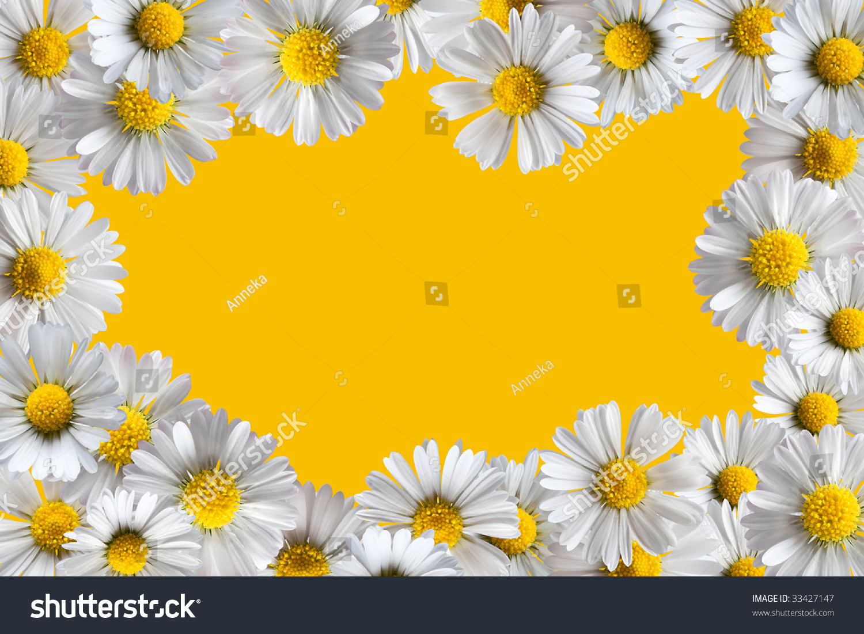 Border frame made isolated daisy flowers stock photo royalty free border frame made of isolated daisy flowers izmirmasajfo