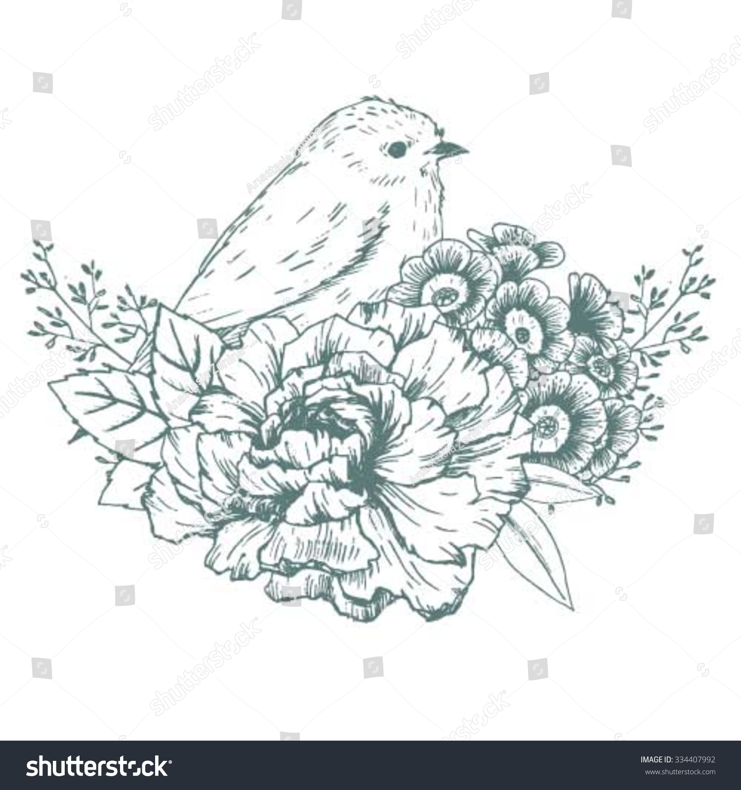 Peony Flower Line Drawing : Vector illustration flowers bird vintage card stock