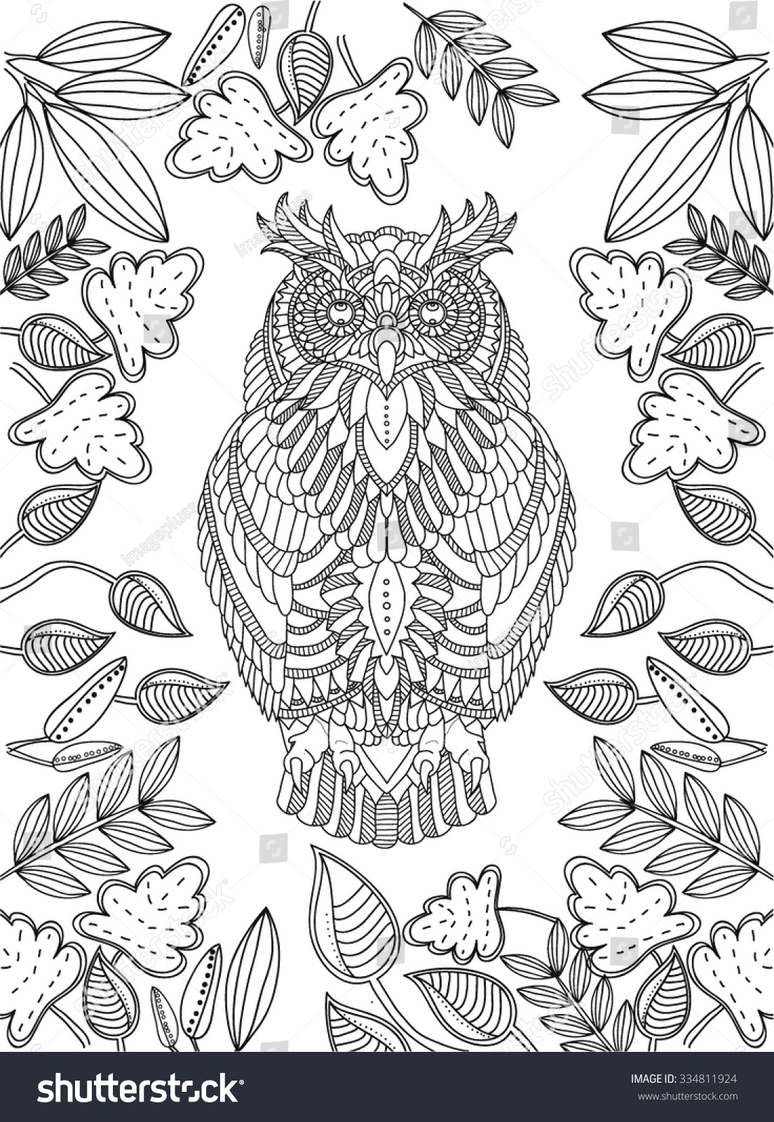 hand drawn owl coloring page stock vector 334811924 shutterstock