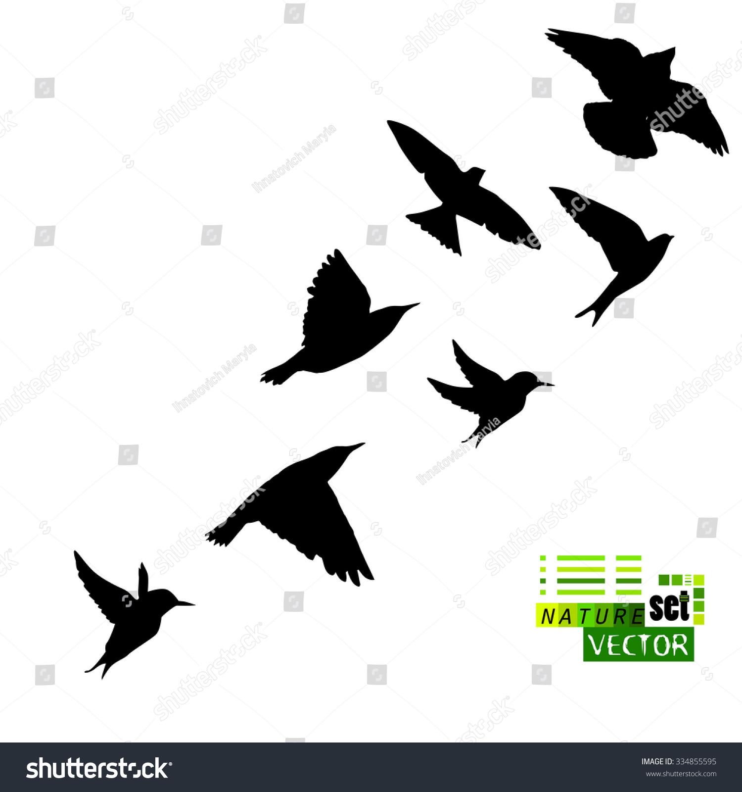 Silhouette Flying Birds Vector Stock Vector 334855595