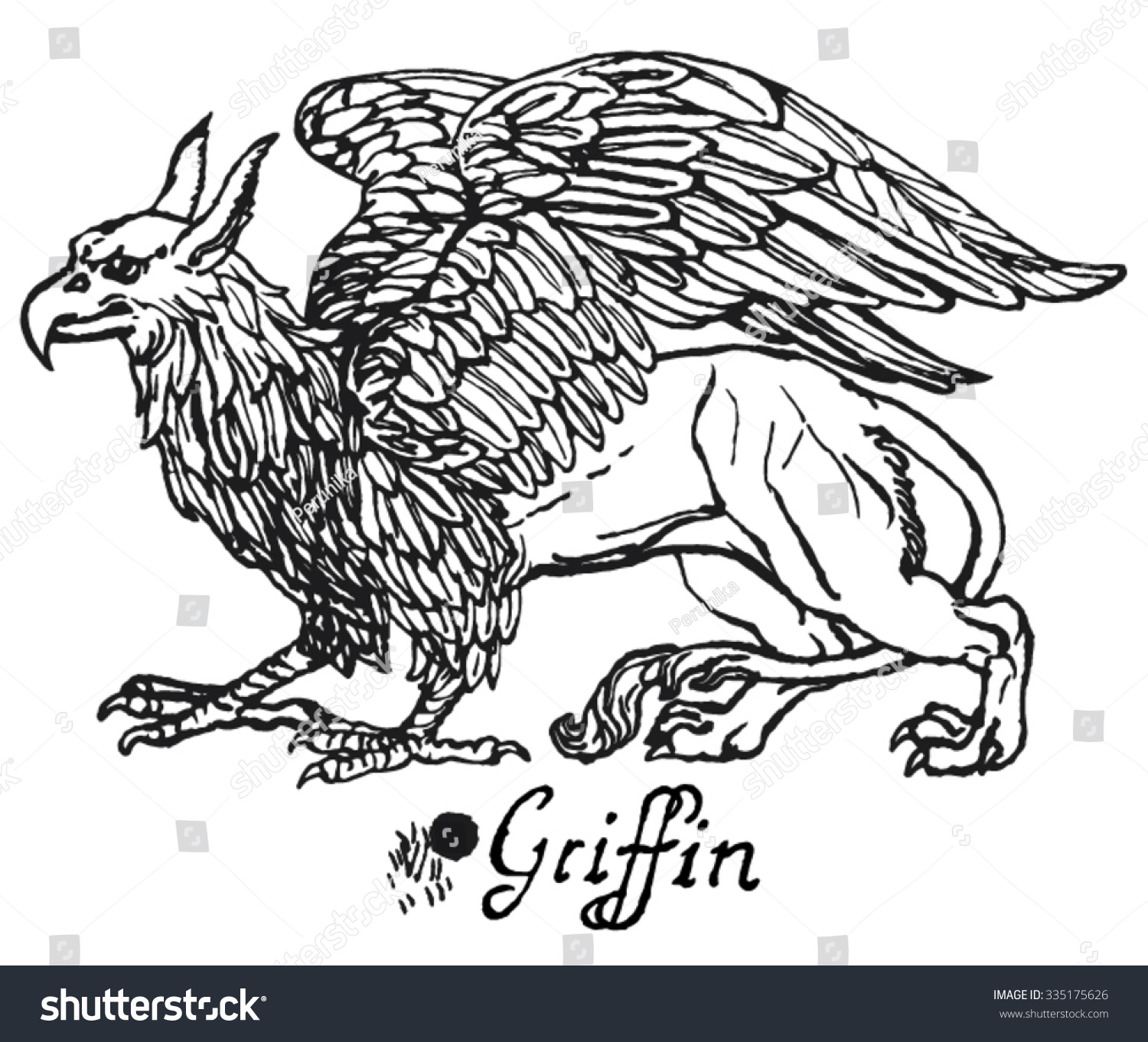 griffin griffon or gryphon with hand drawn brush title vector illustration in