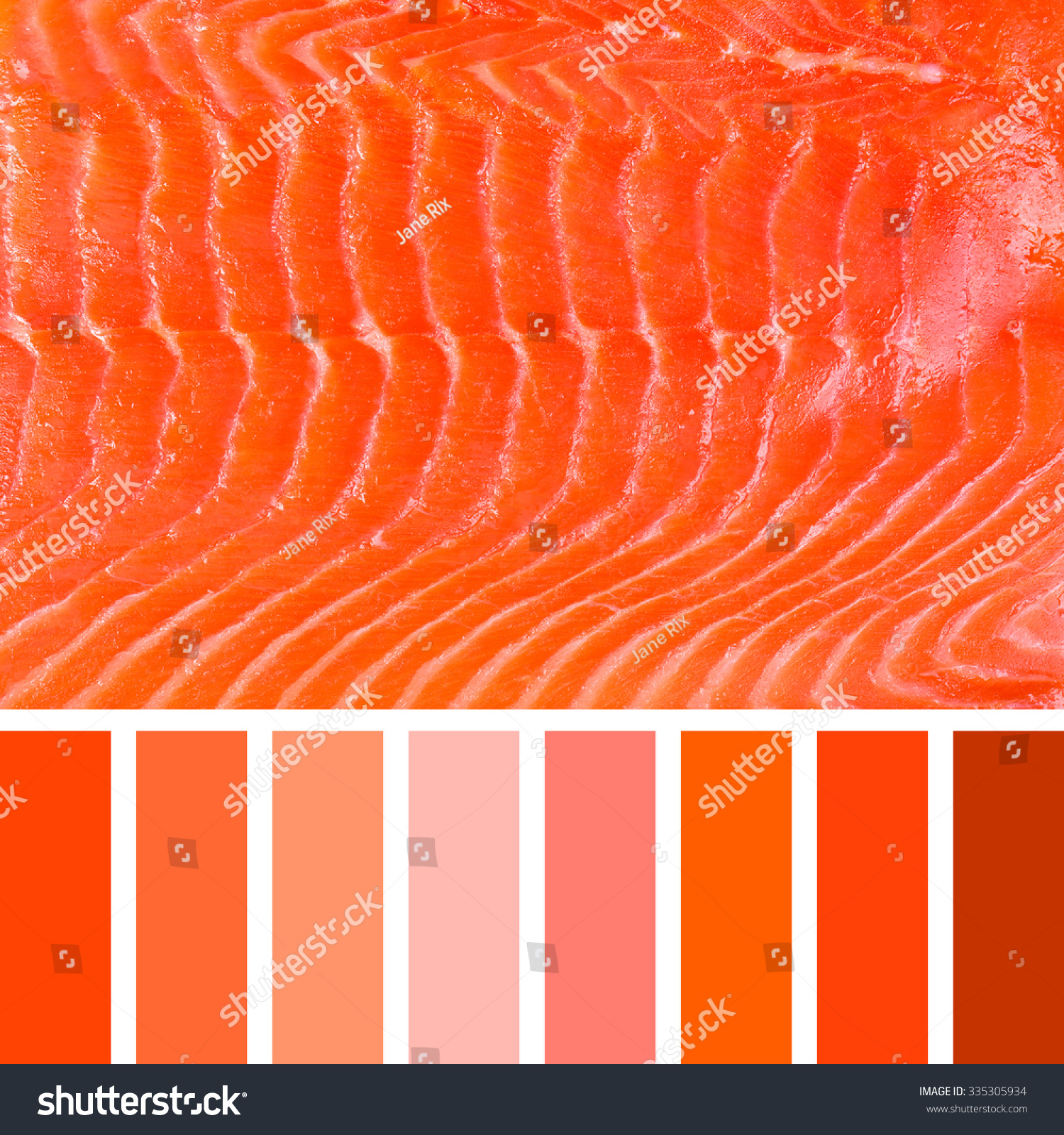 Background Smoked Salmon Colour Palette Complimentary Stock Photo