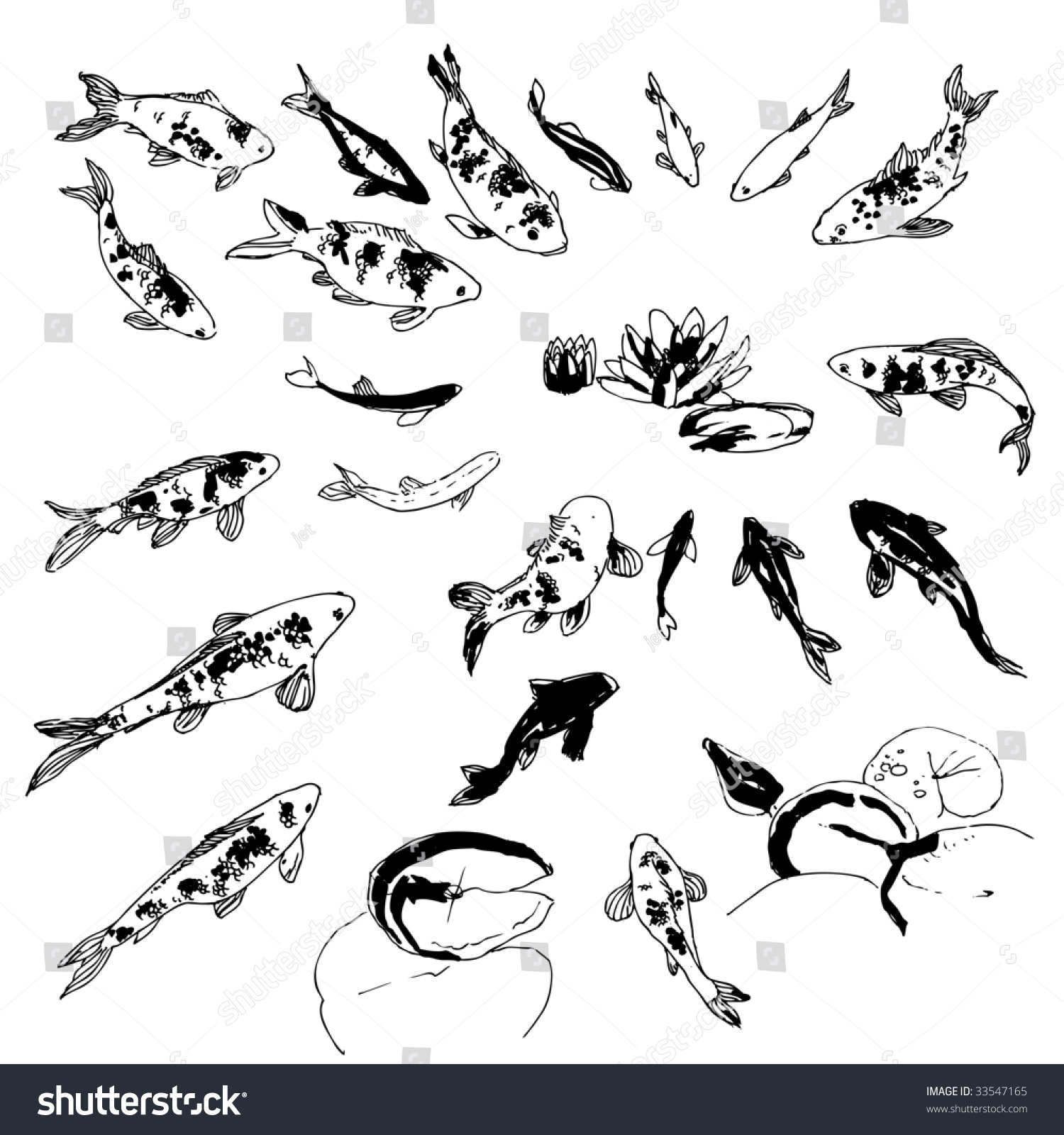 Black white handdrawing koi fish collection stock vector for Black and white koi fish