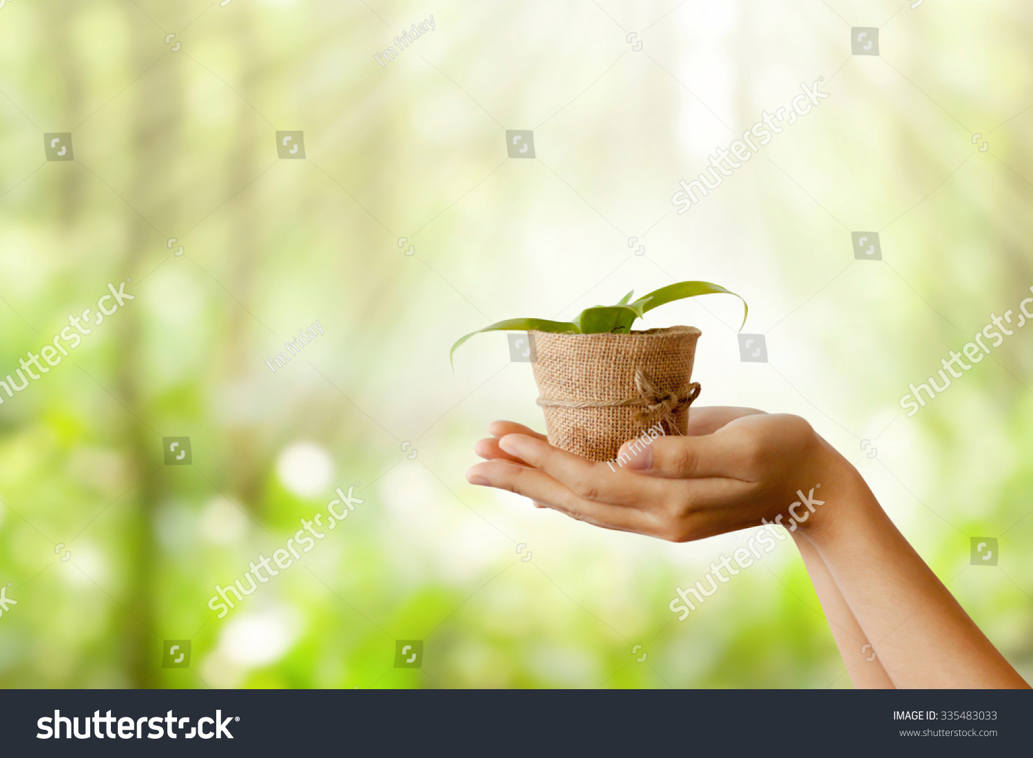 essay about taking care of nature It is here that protection and care is  short essay on the importance of good health  health cannot be achieved merely by taking one or two pills everyday or.