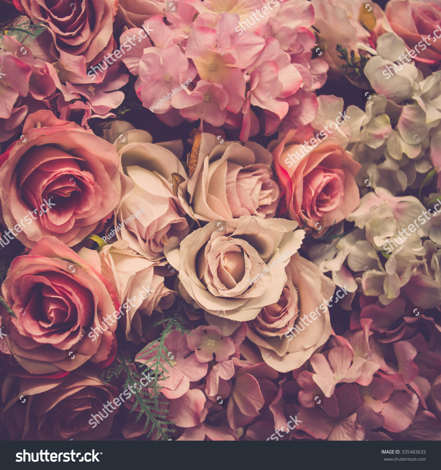 Pink Roses Background Retro Filter Stock Photo 335483633