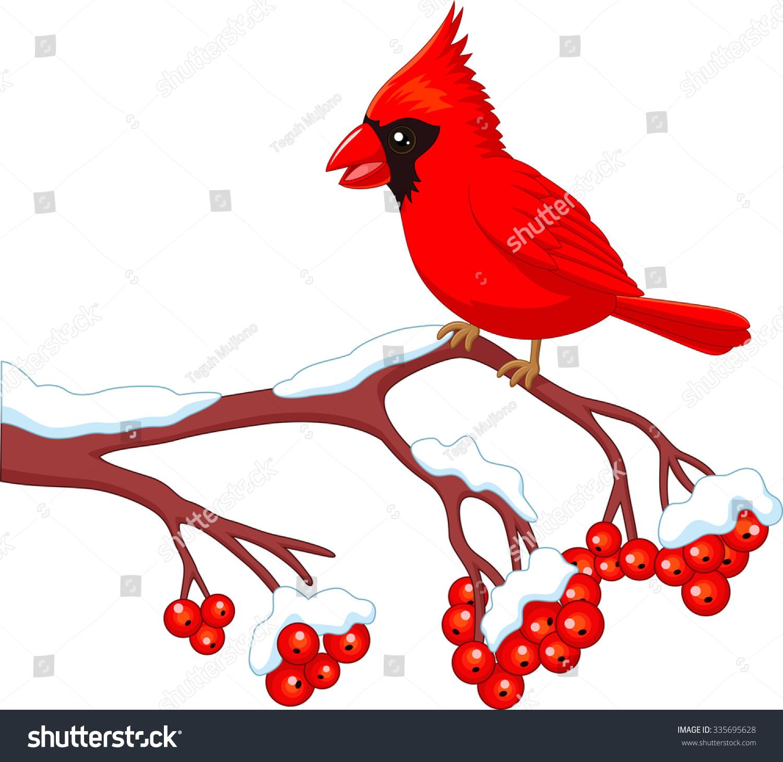 cartoon beautiful cardinal bird posing on stock illustration