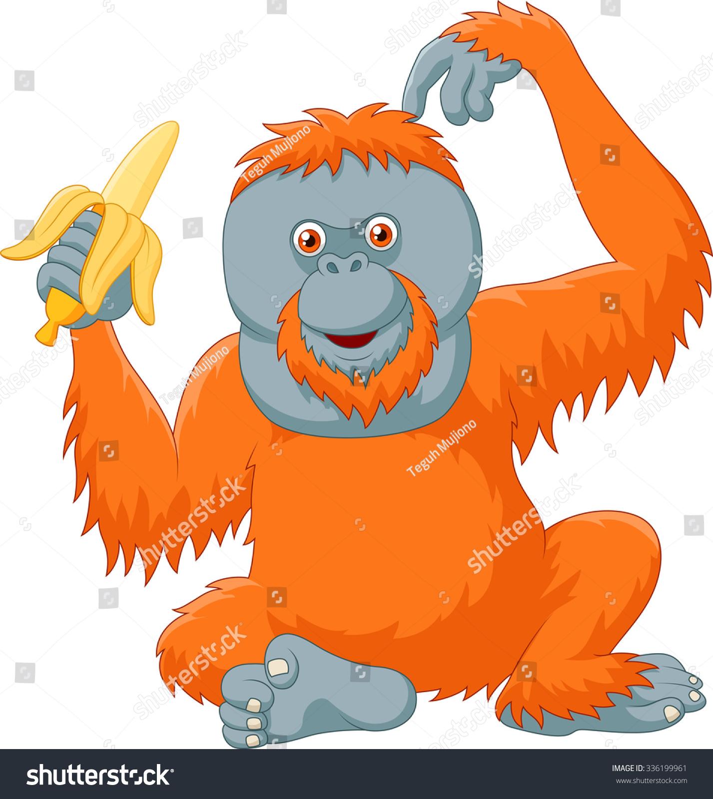Orangutan Cartoon Cartoon Orangut...