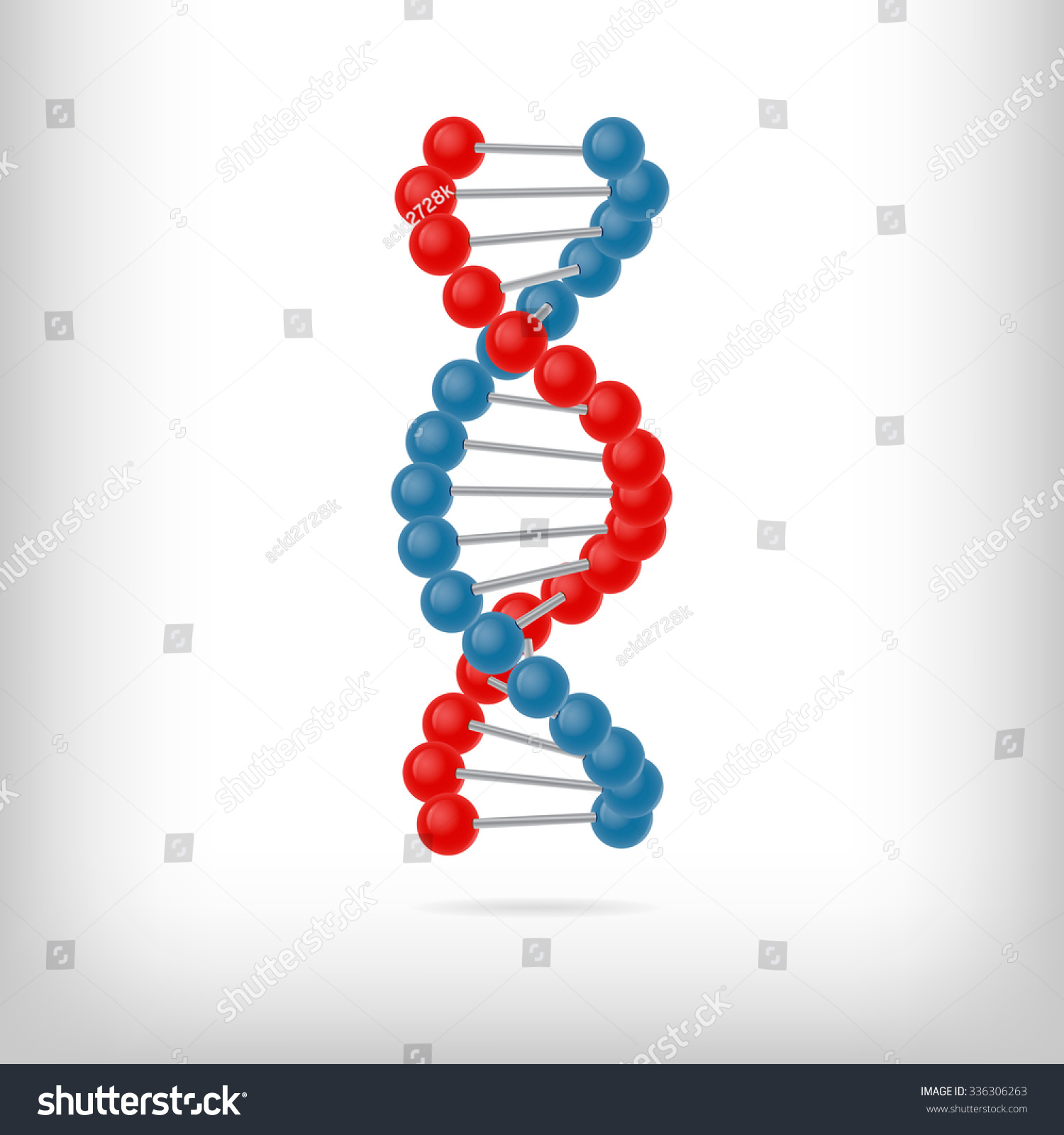 dna molecule project Frederick griffith, a scientist, was working on a project in 1928 that formed the basis that dna was the molecule of inheritance griffith's experiment involved mice and two types of pneumonia – one was virulent and the other non-virulent.