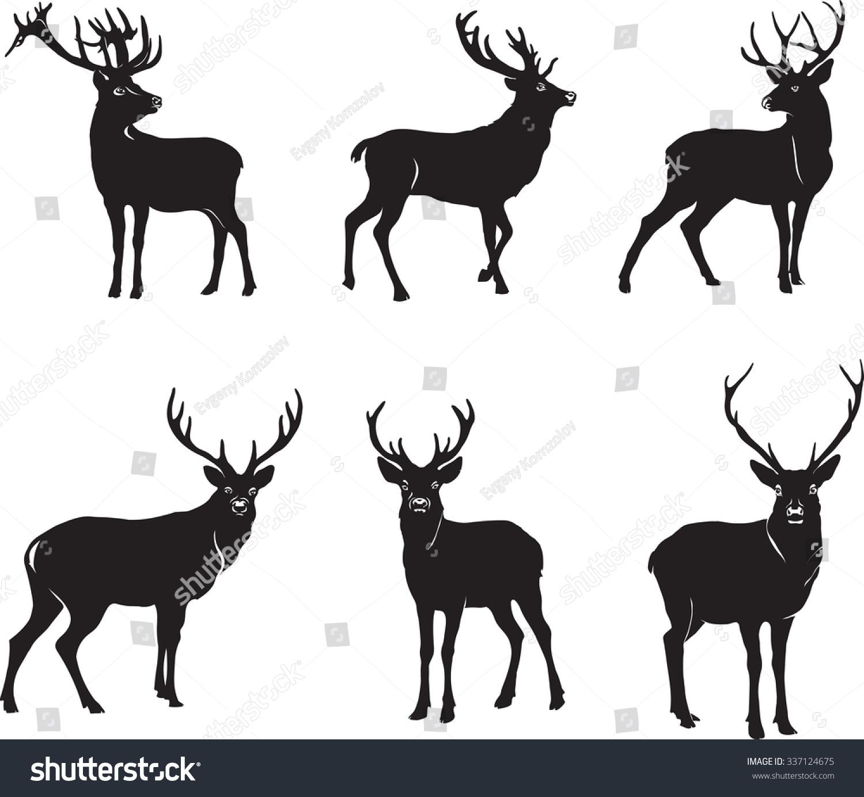 Deer illustration black and white - photo#20