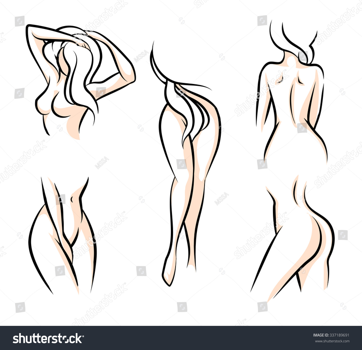 female body parts waist attractive woman stock vector 337189691, Cephalic Vein