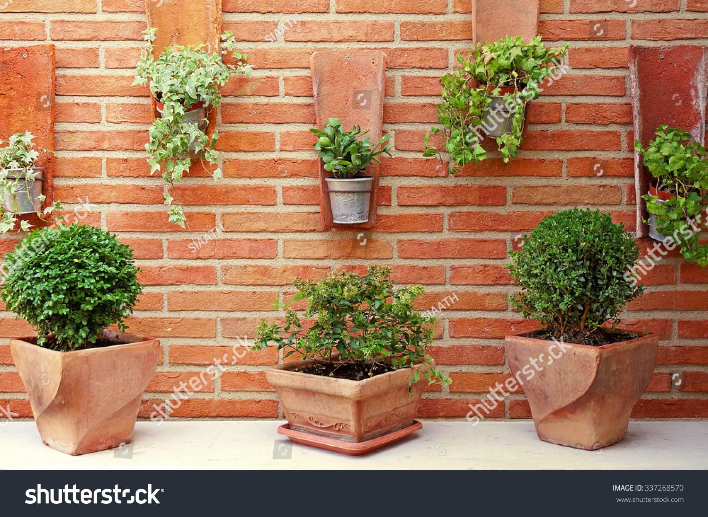 vertical garden ceramic zinc plant pots stock photo 337268570