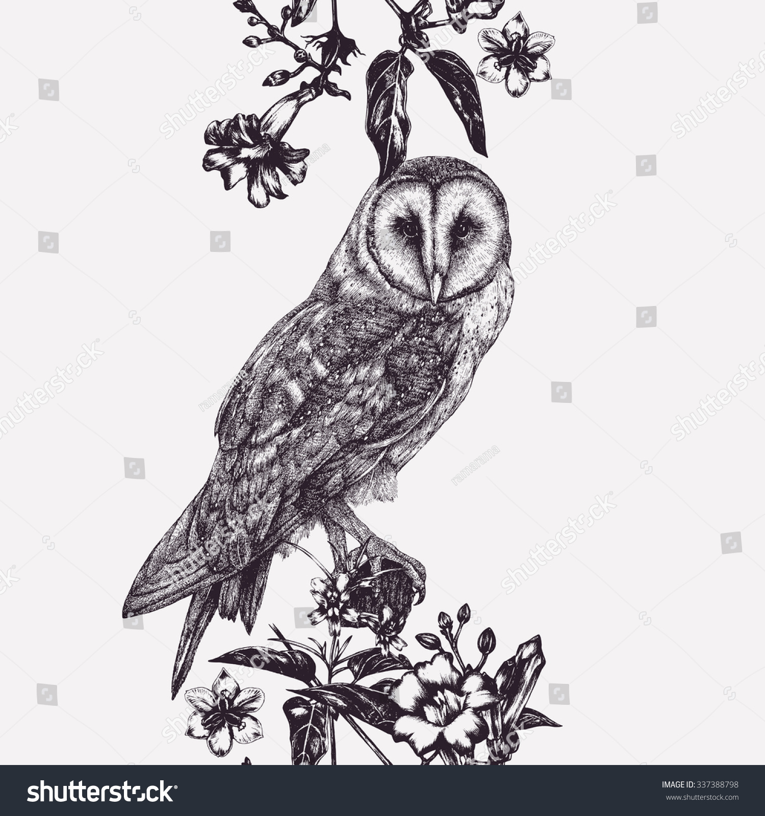 Vector Seamless Pattern Owl Flowers Graphic Stock Vector (Royalty ...