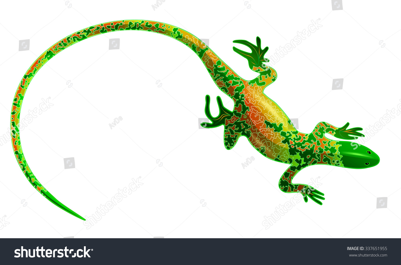 gecko lizard salamander stock illustration 337651955 shutterstock
