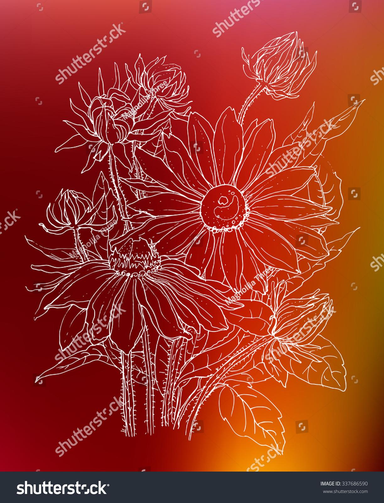 Daisy Flowers Bouquet Botanical Outline Illustration Stock Vector ...