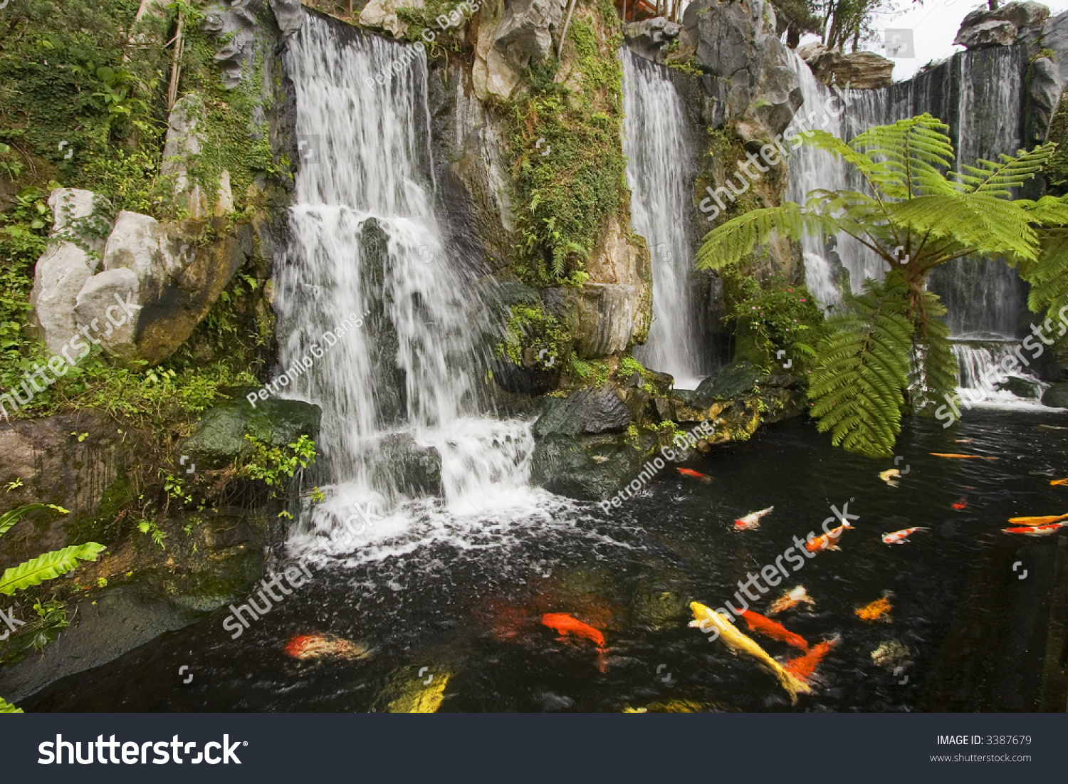 Koi fish pond waterfalls chinese buddhist stock photo for Chinese koi pond