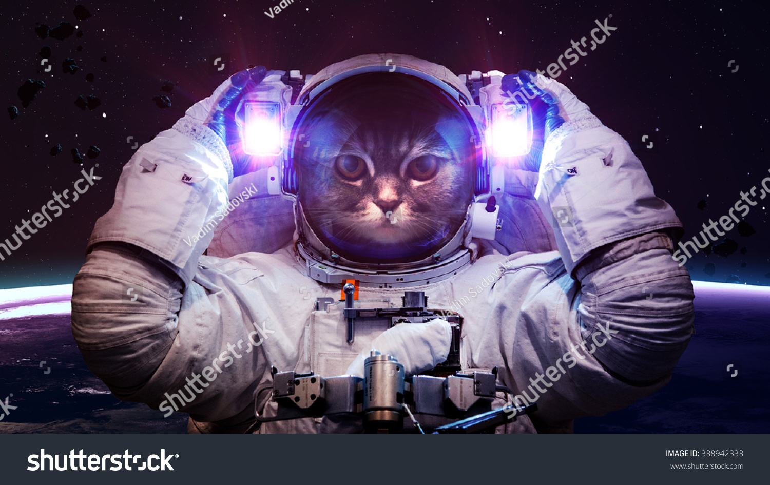 Beautiful cat outer space elements this stock photo for Outer space elements