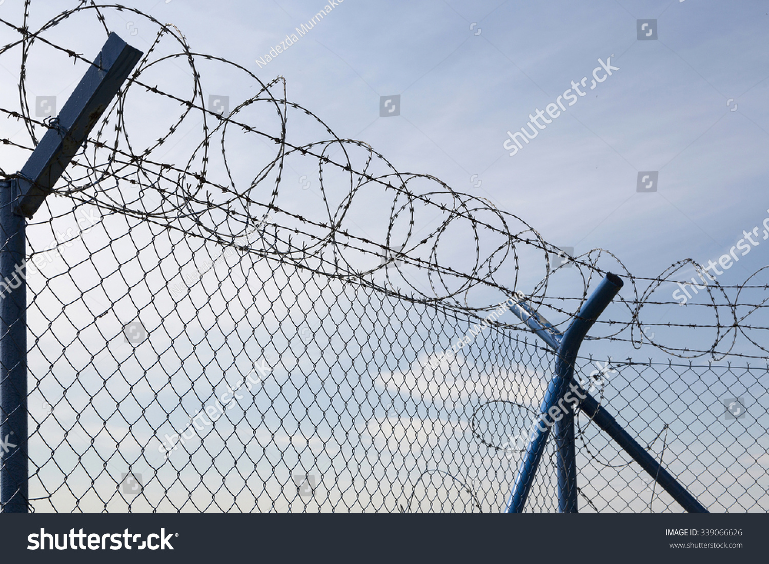 Protective Wire Fence Barbed Wire On Stock Photo (Edit Now ...