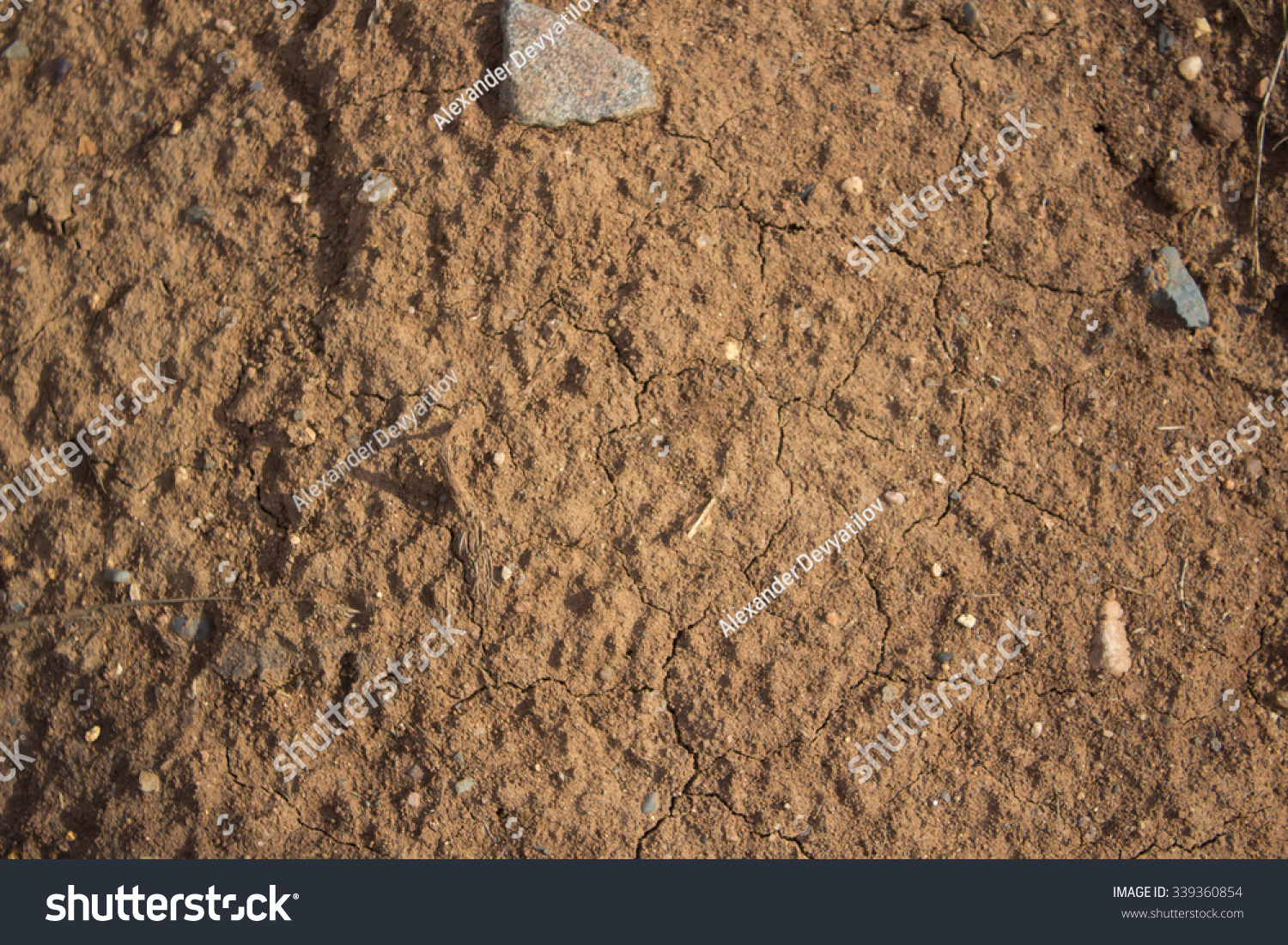 Yellow soil stock photo 339360854 shutterstock for Soil yellow color