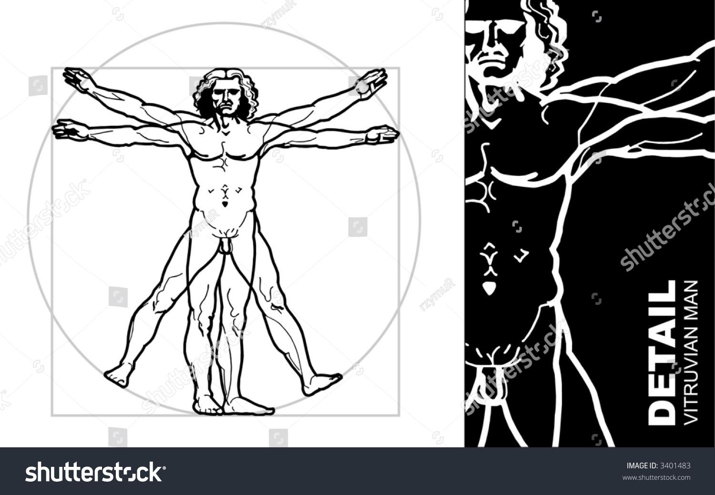 Leonardos Vitruvian Man Vector Stock Vector 3401483 - Shutterstock