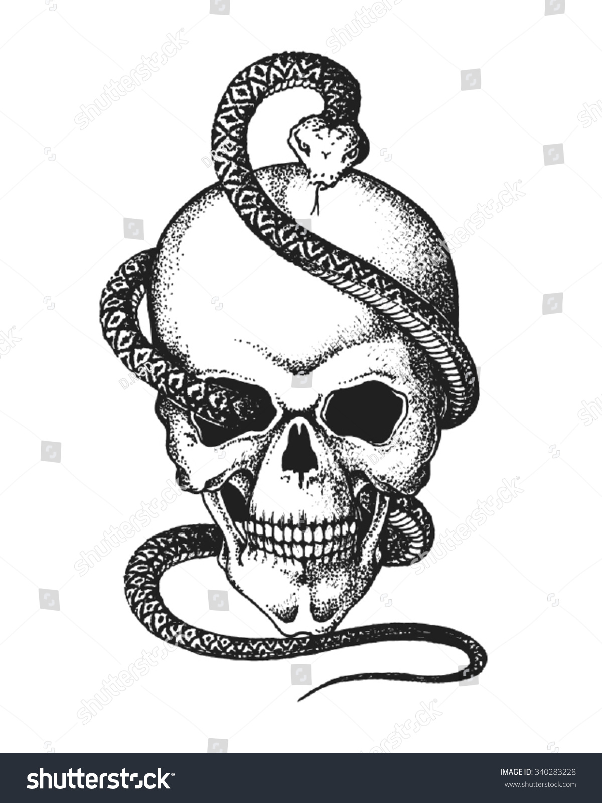 Hand Drawn Human Skull Entwined By Snake Vector Illustration