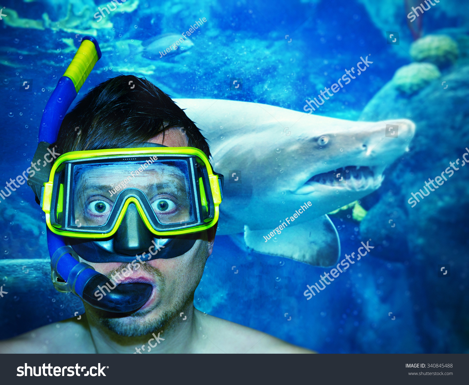 Diver with shark in background