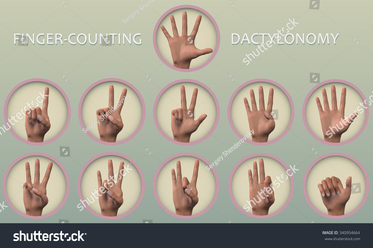 Set symbol icons fingercounting dactylonomy which stock vector a set of symbol icons finger counting or dactylonomy which is the act buycottarizona