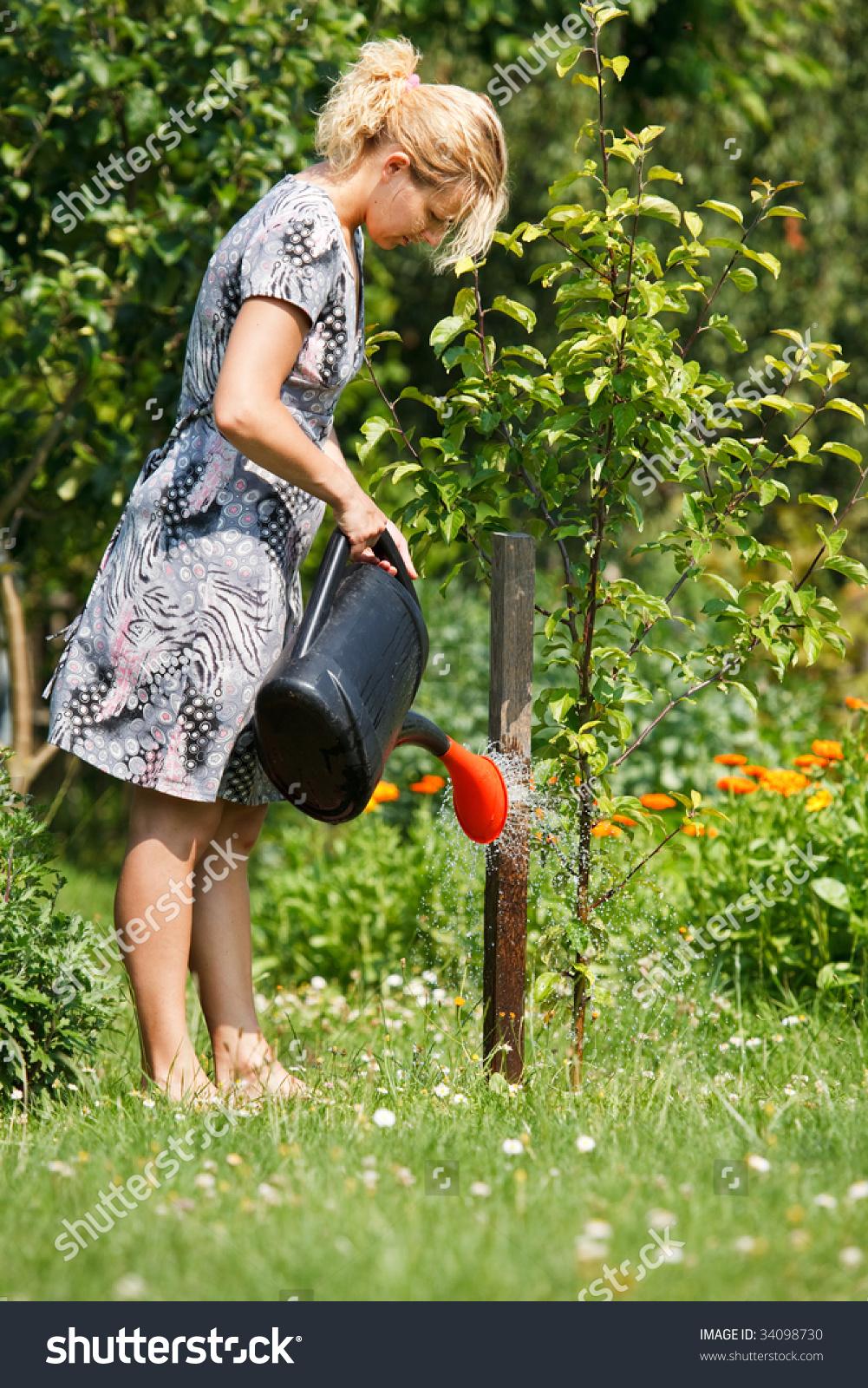 Woman Watering Apple Tree Watering Pot Stock Photo Edit Now 34098730