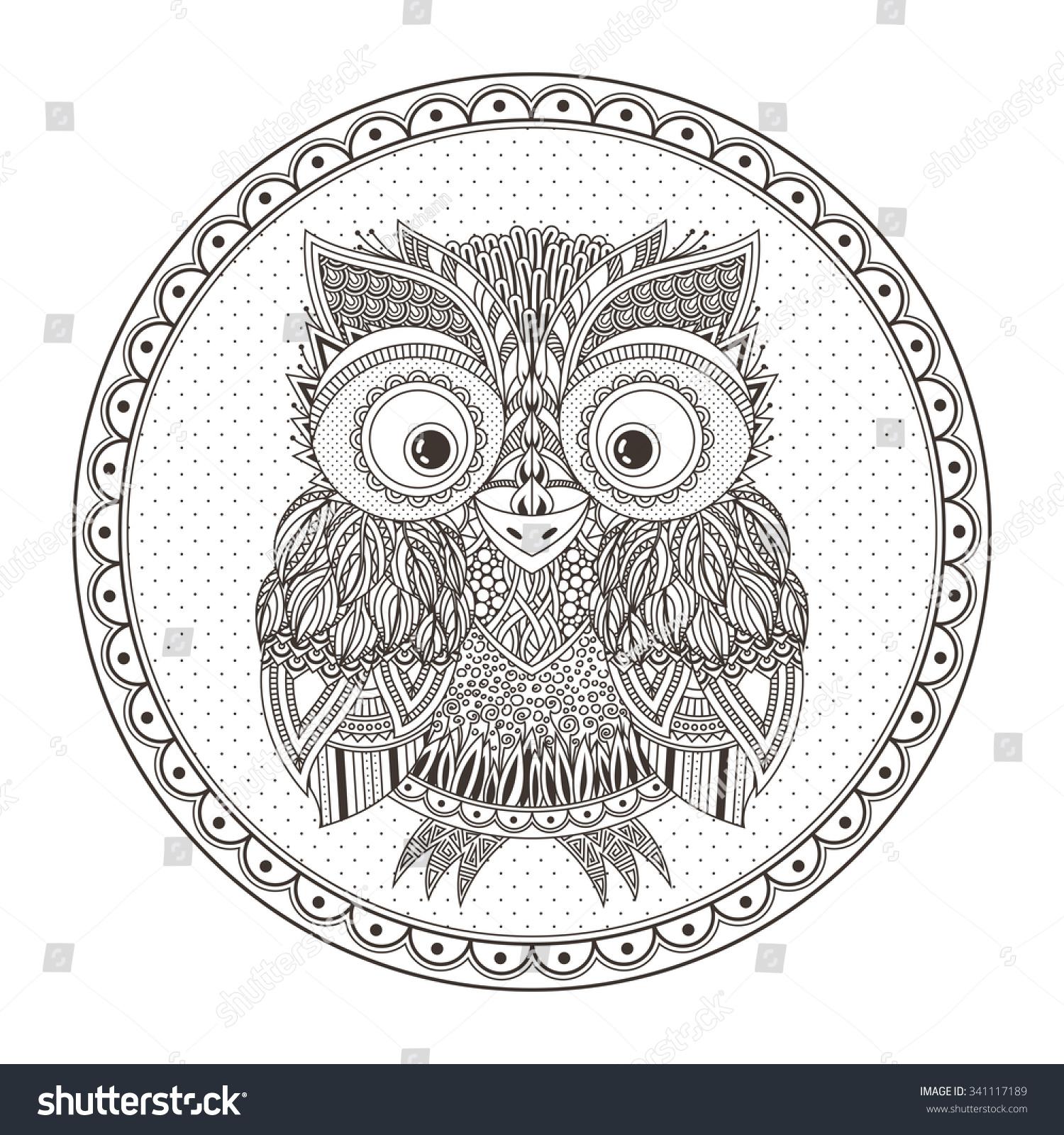 zentangle owl illustration ornate patterned bird stock