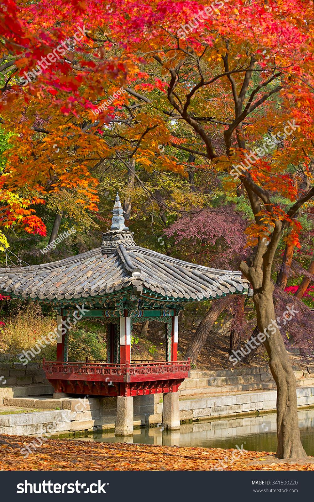 Royalty-free Fall season in the Secret garden, Seoul… #341500220 ...