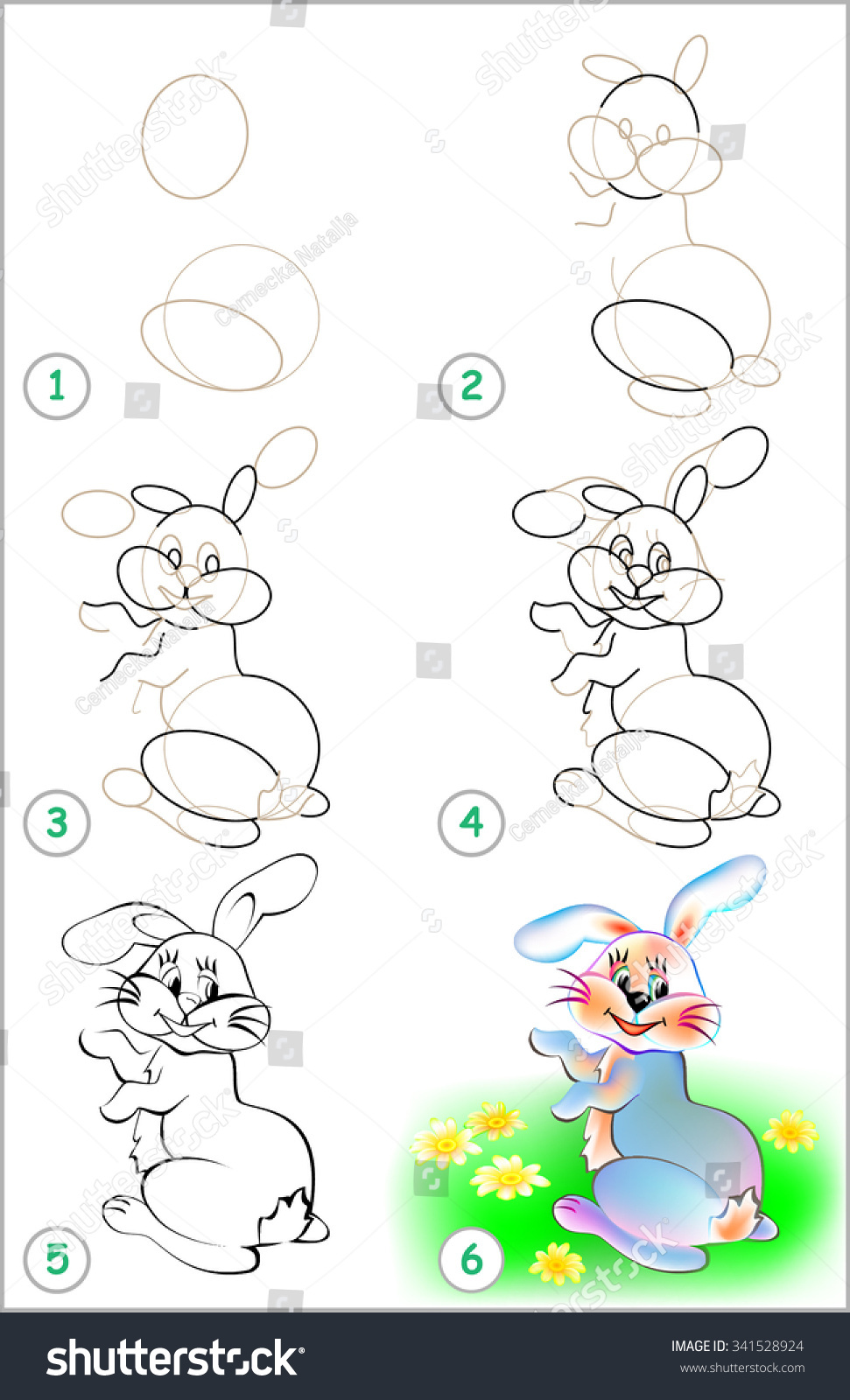 how to draw a jack rabbit step by step